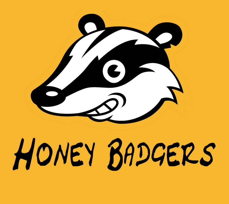 honey badgers band